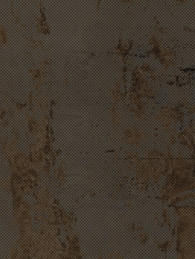 https://no.diesel.com/dw/image/v2/BBLG_PRD/on/demandware.static/-/Sites-diesel-master-catalog/default/dwf22d90b7/images/large/IRISMETPPRS_01_O.jpg?sw=622&sh=829